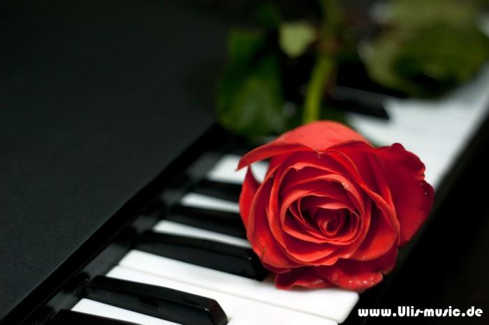 Musik für jeden Anlass